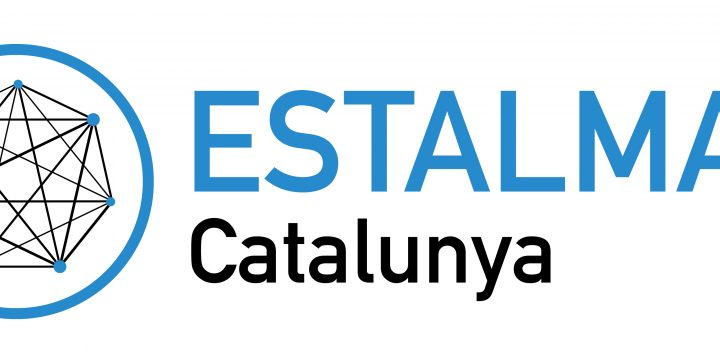 Estalmat 2019-2021